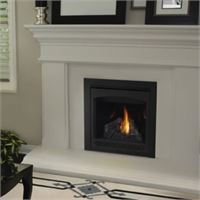 Napoleon Ascent 30-B30 Direct Vent Fireplace